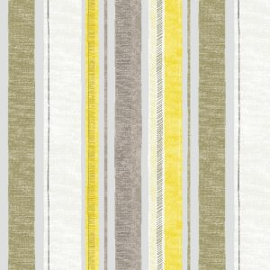 spinney-maize-1024x1024